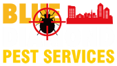 Reliable Bed Bug Exterminator in Charlotte NC